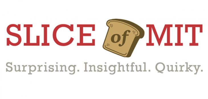 Slice of MIT logo